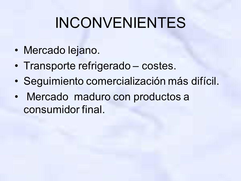 INCONVENIENTES Mercado lejano. Transporte refrigerado – costes. Seguimiento comercialización más difícil. Mercado maduro con productos a consumidor fi