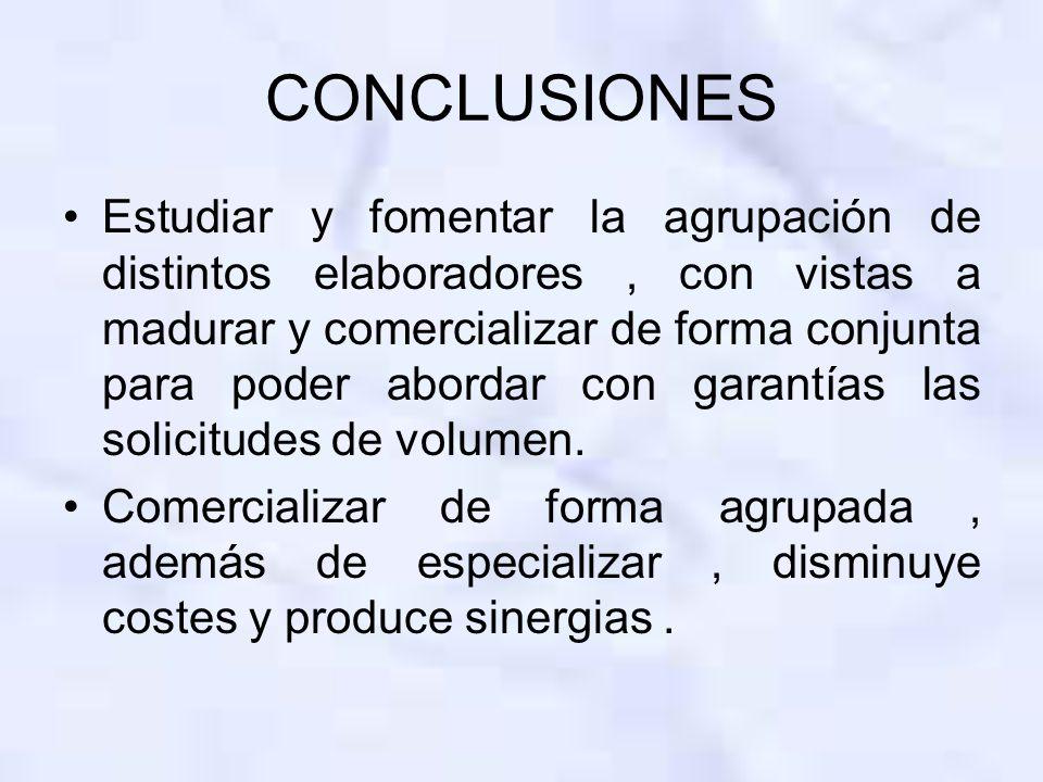 CONCLUSIONES Estudiar y fomentar la agrupación de distintos elaboradores, con vistas a madurar y comercializar de forma conjunta para poder abordar con garantías las solicitudes de volumen.