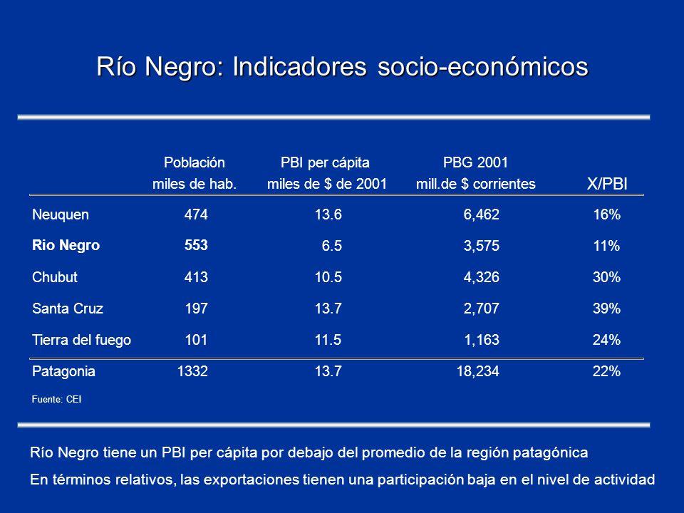 Río Negro: Indicadores socio-económicos Río Negro tiene un PBI per cápita por debajo del promedio de la región patagónica En términos relativos, las exportaciones tienen una participación baja en el nivel de actividad PoblaciónPBI per cápitaPBG 2001 miles de hab.miles de $ de 2001mill.de $ corrientes X/PBI Neuquen47413.66,46216% Rio Negro553 6.53,57511% Chubut41310.54,32630% Santa Cruz19713.72,70739% Tierra del fuego10111.51,16324% Patagonia133213.718,23422% Fuente: CEI