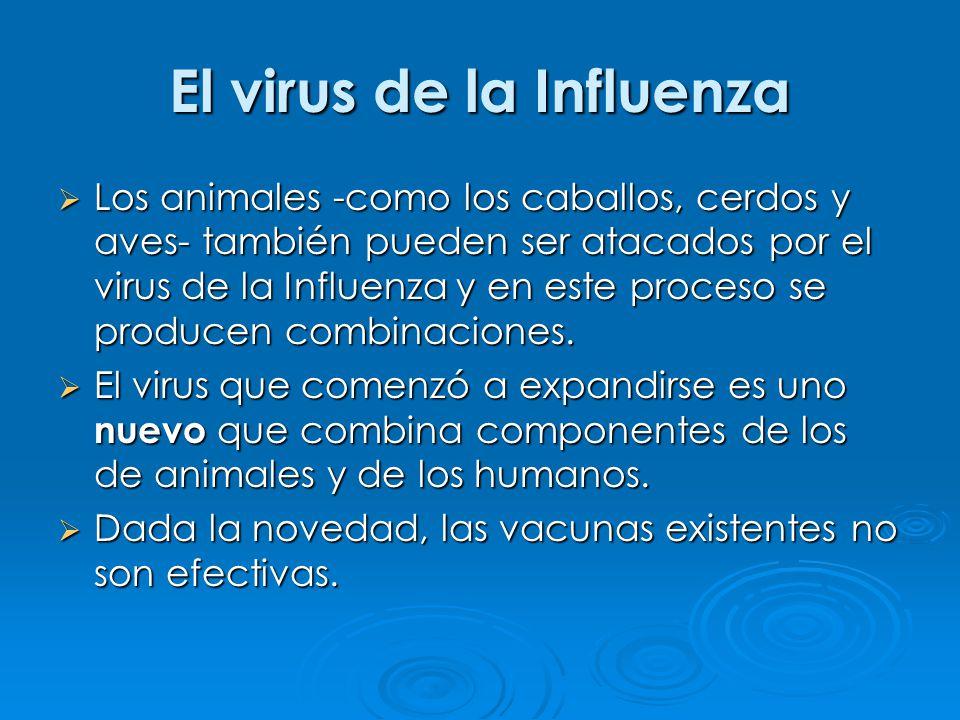 El virus de la Influenza Los animales -como los caballos, cerdos y aves- también pueden ser atacados por el virus de la Influenza y en este proceso se producen combinaciones.