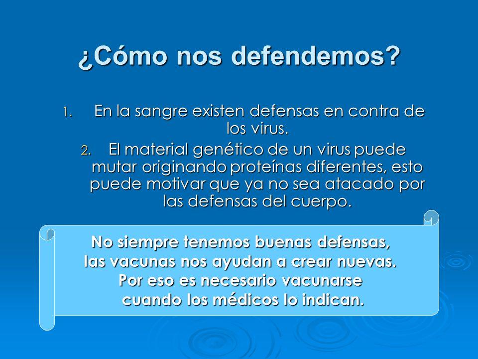 1. En la sangre existen defensas en contra de los virus.