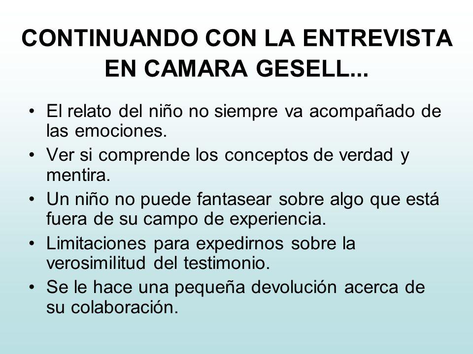 CONTINUANDO CON LA ENTREVISTA EN CAMARA GESELL...