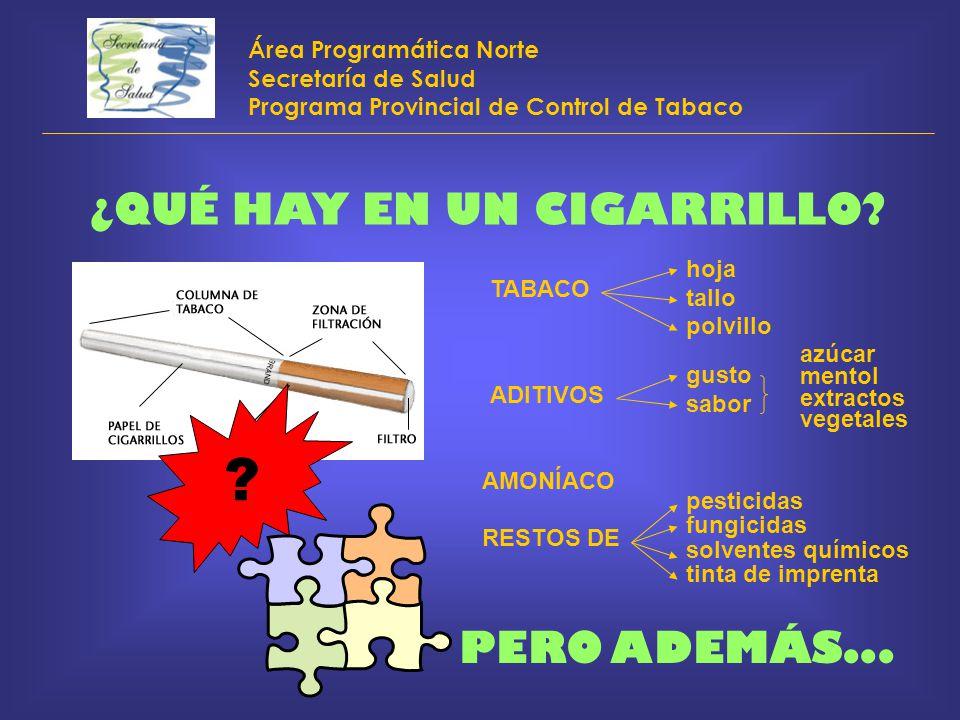 Área Programática Norte Secretaría de Salud Programa Provincial de Control de Tabaco ¿QUÉ HAY EN UN CIGARRILLO? ? TABACO hoja tallo polvillo ADITIVOS