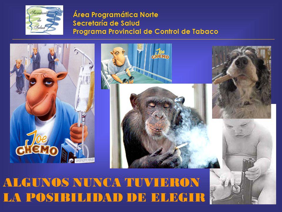 Área Programática Norte Secretaría de Salud Programa Provincial de Control de Tabaco ALGUNOS NUNCA TUVIERON LA POSIBILIDAD DE ELEGIR