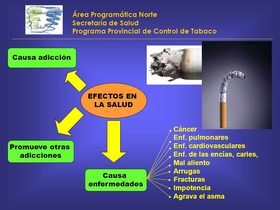 Área Programática Norte Secretaría de Salud Programa Provincial de Control de Tabaco EFECTOS EN LA SALUD Causa adicción Promueve otras adicciones Caus