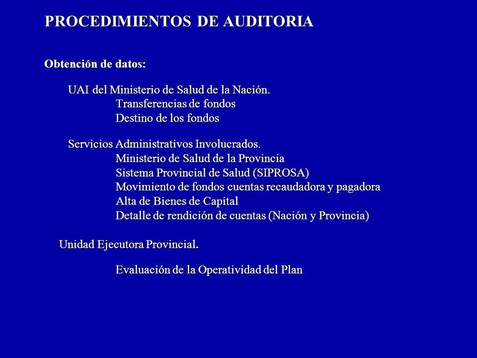 PROCEDIMIENTOS DE AUDITORIA Obtención de datos: UAI del Ministerio de Salud de la Nación.