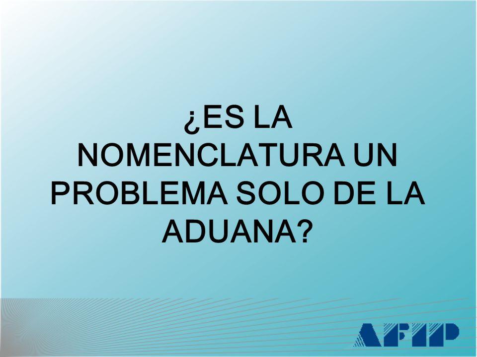 ¿ES LA NOMENCLATURA UN PROBLEMA SOLO DE LA ADUANA