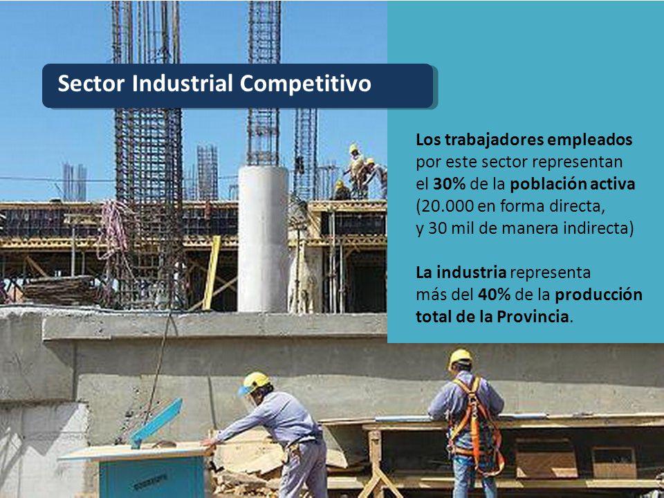Sector Industrial Competitivo Los trabajadores empleados por este sector representan el 30% de la población activa (20.000 en forma directa, y 30 mil