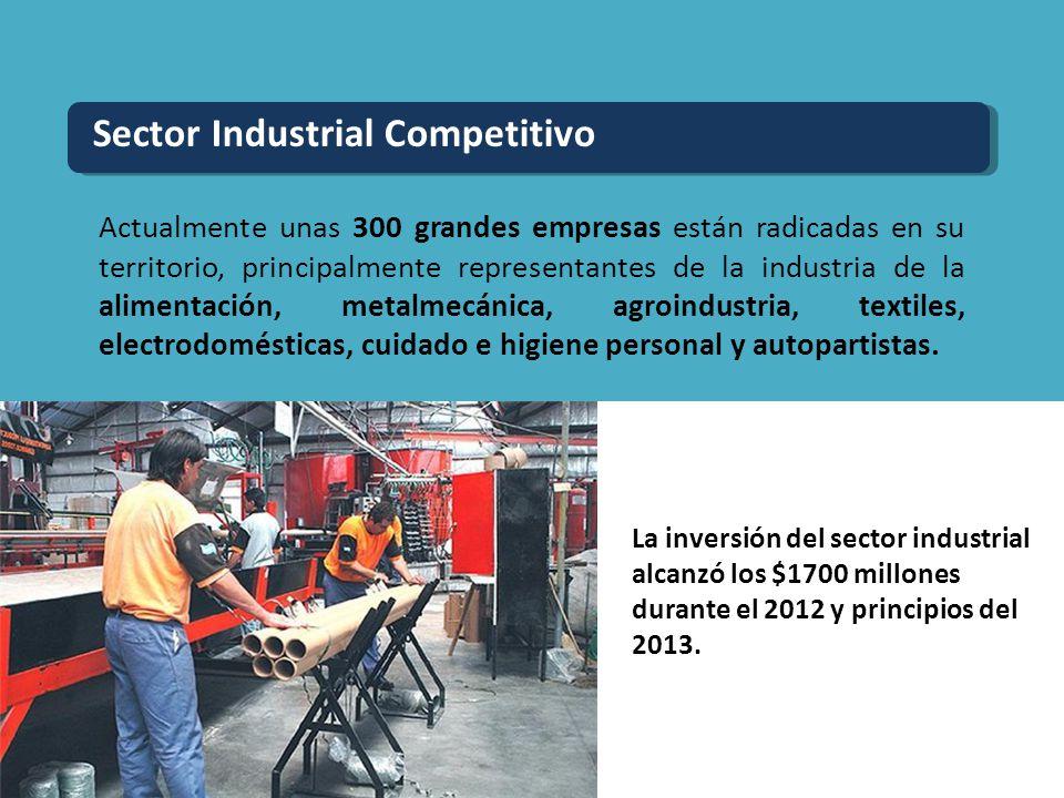 Actualmente unas 300 grandes empresas están radicadas en su territorio, principalmente representantes de la industria de la alimentación, metalmecánic