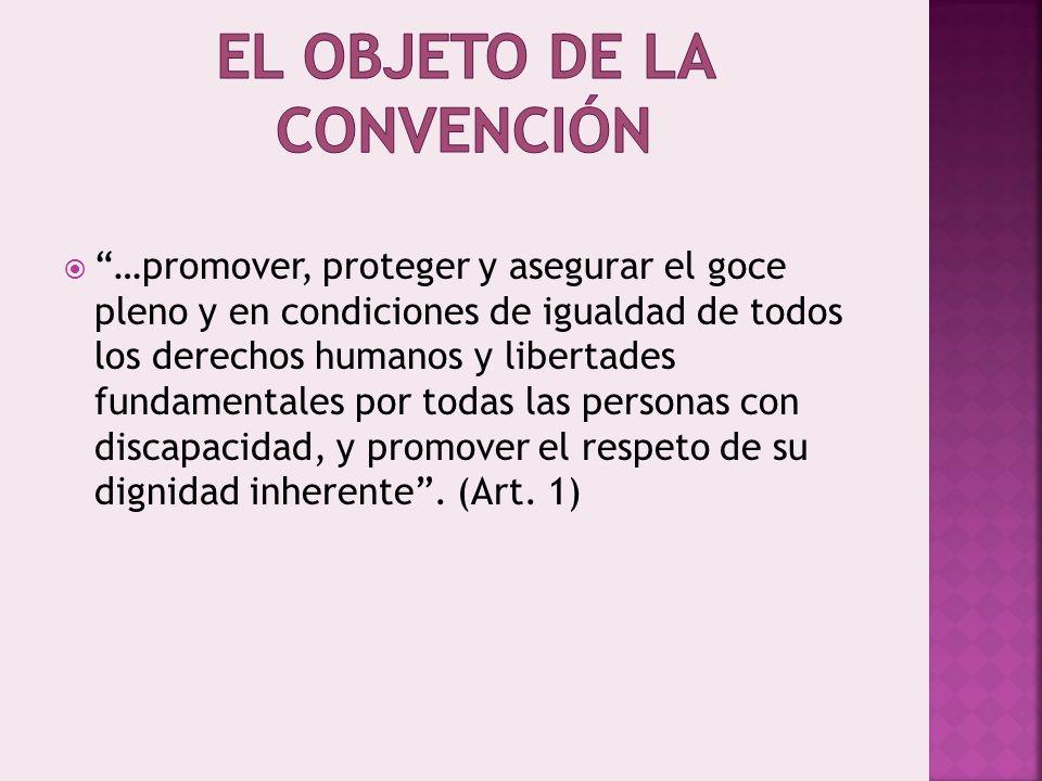 …promover, proteger y asegurar el goce pleno y en condiciones de igualdad de todos los derechos humanos y libertades fundamentales por todas las personas con discapacidad, y promover el respeto de su dignidad inherente.