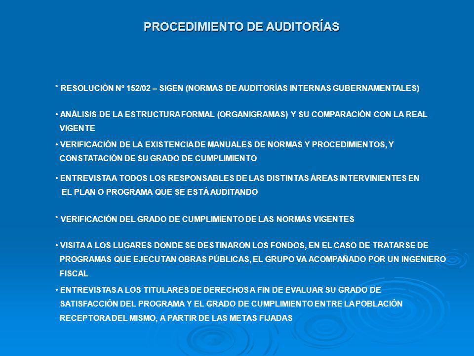 PROCEDIMIENTO DE AUDITORÍAS * RESOLUCIÓN Nº 152/02 – SIGEN (NORMAS DE AUDITORÍAS INTERNAS GUBERNAMENTALES) ANÁLISIS DE LA ESTRUCTURA FORMAL (ORGANIGRA