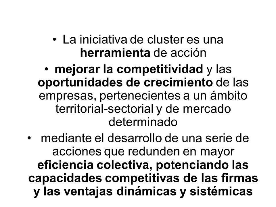 La iniciativa de cluster es una herramienta de acción mejorar la competitividad y las oportunidades de crecimiento de las empresas, pertenecientes a un ámbito territorial-sectorial y de mercado determinado mediante el desarrollo de una serie de acciones que redunden en mayor eficiencia colectiva, potenciando las capacidades competitivas de las firmas y las ventajas dinámicas y sistémicas