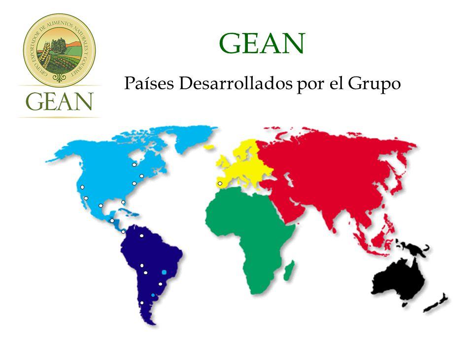 GEAN Países Desarrollados por el Grupo