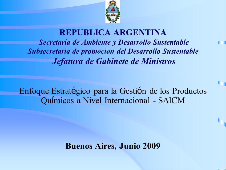 REPUBLICA ARGENTINA Secretaría de Ambiente y Desarrollo Sustentable Subsecretaria de promocion del Desarrollo Sustentable Jefatura de Gabinete de Ministros Enfoque Estrat é gico para la Gesti ó n de los Productos Qu í micos a Nivel Internacional - SAICM Buenos Aires, Junio 2009