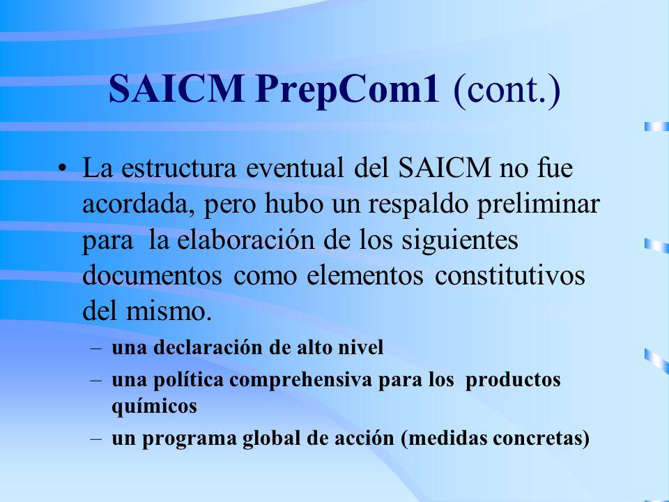 SAICM PrepCom1 (cont.) La estructura eventual del SAICM no fue acordada, pero hubo un respaldo preliminar para la elaboración de los siguientes documentos como elementos constitutivos del mismo.