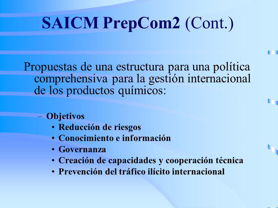 SAICM PrepCom2 (Cont.) Propuestas de una estructura para una política comprehensiva para la gestión internacional de los productos químicos: –Objetivo