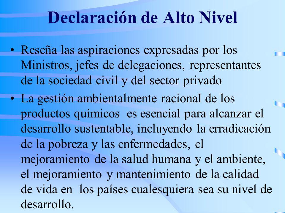 Declaración de Alto Nivel Reseña las aspiraciones expresadas por los Ministros, jefes de delegaciones, representantes de la sociedad civil y del secto