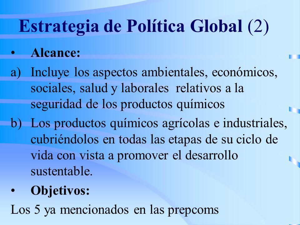 Estrategia de Política Global (2) Alcance: a)Incluye los aspectos ambientales, económicos, sociales, salud y laborales relativos a la seguridad de los productos químicos b)Los productos químicos agrícolas e industriales, cubriéndolos en todas las etapas de su ciclo de vida con vista a promover el desarrollo sustentable.