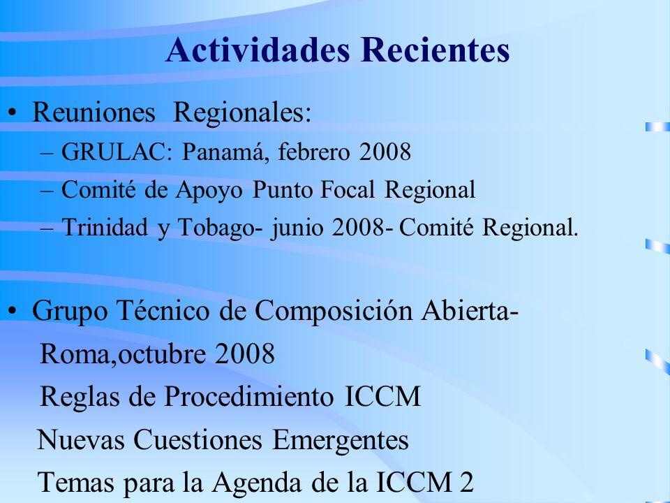 Actividades Recientes Reuniones Regionales: –GRULAC: Panamá, febrero 2008 –Comité de Apoyo Punto Focal Regional –Trinidad y Tobago- junio 2008- Comité