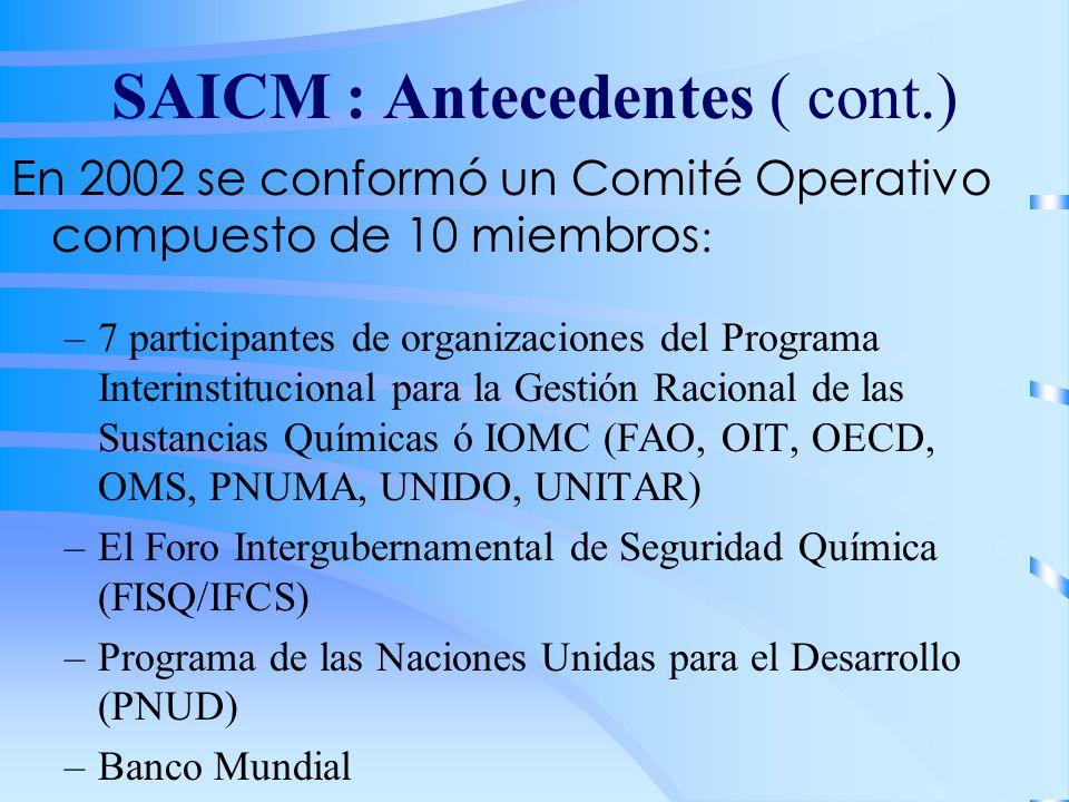 SAICM : Antecedentes ( cont.) En 2002 se conformó un Comité Operativo compuesto de 10 miembros : –7 participantes de organizaciones del Programa Inter