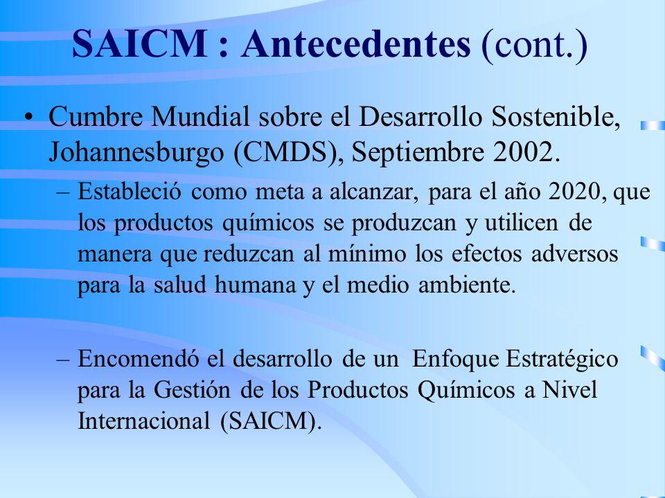 SAICM : Antecedentes (cont.) Cumbre Mundial sobre el Desarrollo Sostenible, Johannesburgo (CMDS), Septiembre 2002. –Estableció como meta a alcanzar, p