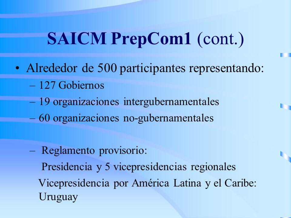 SAICM PrepCom1 (cont.) Alrededor de 500 participantes representando: –127 Gobiernos –19 organizaciones intergubernamentales –60 organizaciones no-gubernamentales – Reglamento provisorio: Presidencia y 5 vicepresidencias regionales Vicepresidencia por América Latina y el Caribe: Uruguay