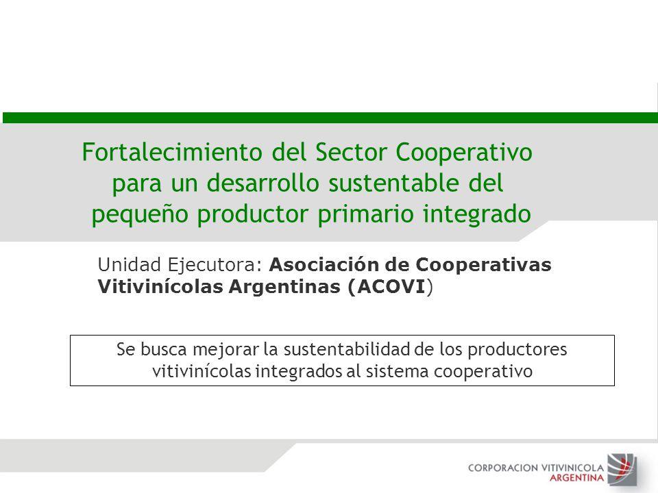 Unidad Ejecutora: Asociación de Cooperativas Vitivinícolas Argentinas (ACOVI) Fortalecimiento del Sector Cooperativo para un desarrollo sustentable de