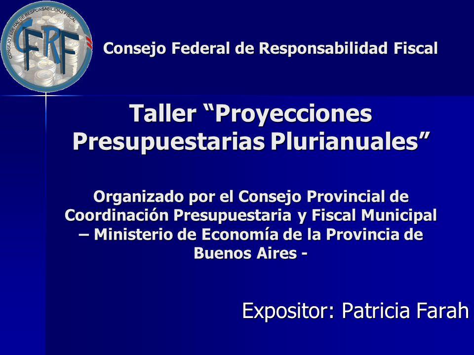 Taller Proyecciones Presupuestarias Plurianuales Organizado por el Consejo Provincial de Coordinación Presupuestaria y Fiscal Municipal – Ministerio d