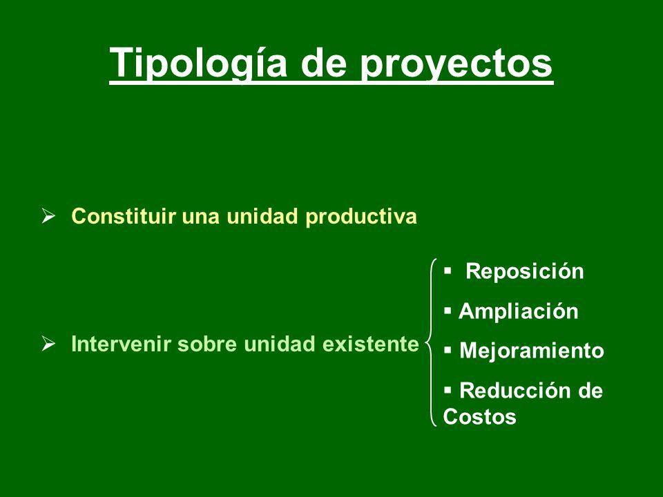 Constituir una unidad productiva Intervenir sobre unidad existente Reposición Ampliación Mejoramiento Reducción de Costos Tipología de proyectos