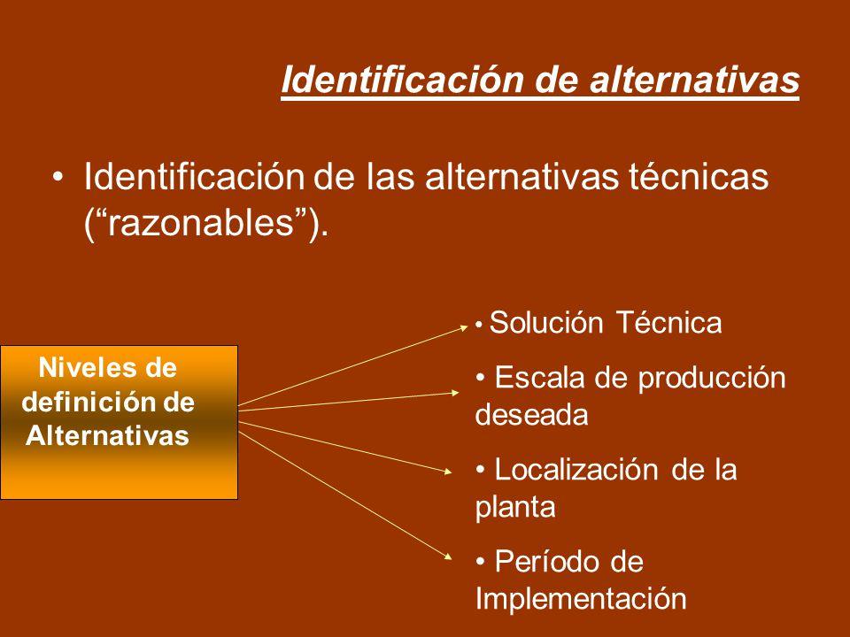 Identificación de alternativas Identificación de las alternativas técnicas (razonables). Solución Técnica Escala de producción deseada Localización de
