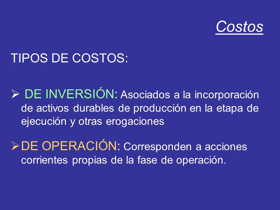 Costos TIPOS DE COSTOS: DE INVERSIÓN: Asociados a la incorporación de activos durables de producción en la etapa de ejecución y otras erogaciones DE O
