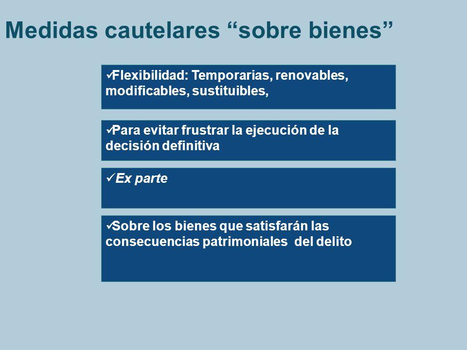 Medidas cautelares sobre bienes Flexibilidad: Temporarias, renovables, modificables, sustituibles, Para evitar frustrar la ejecución de la decisión de