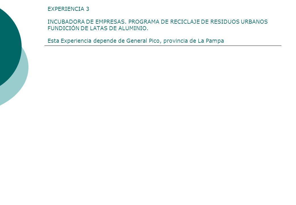 EXPERIENCIA 3 INCUBADORA DE EMPRESAS. PROGRAMA DE RECICLAJE DE RESIDUOS URBANOS FUNDICIÓN DE LATAS DE ALUMINIO. Esta Experiencia depende de General Pi
