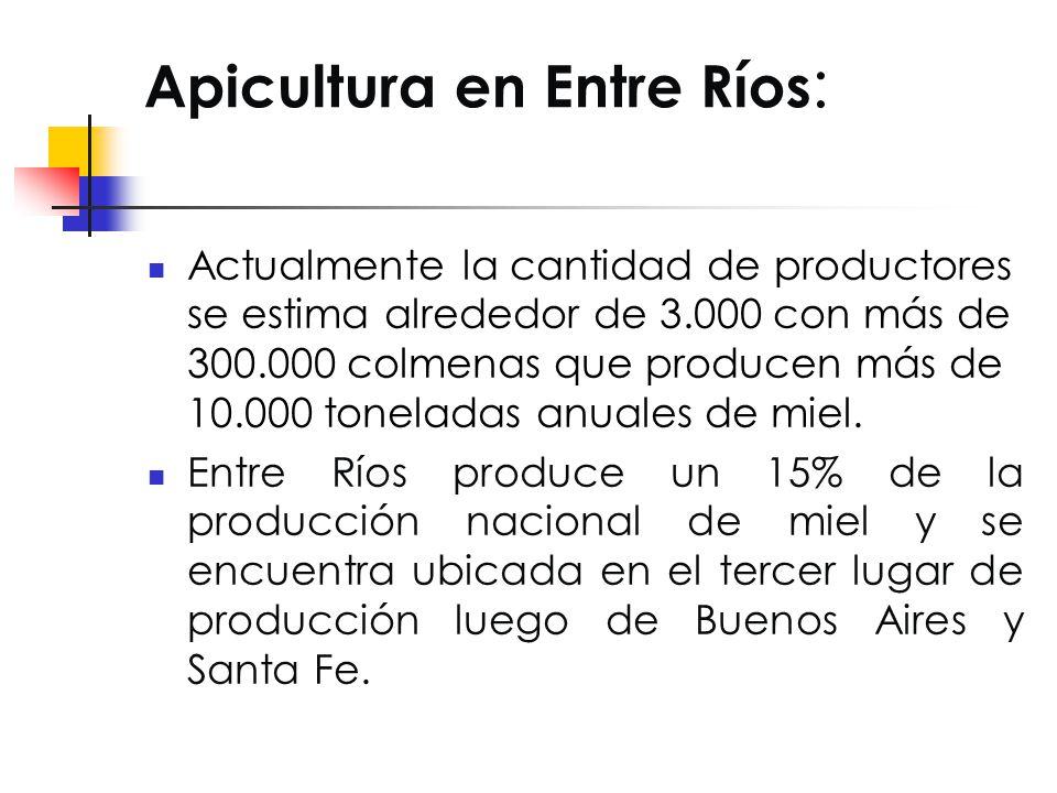 Apicultura en Entre Ríos : Actualmente la cantidad de productores se estima alrededor de 3.000 con más de 300.000 colmenas que producen más de 10.000 toneladas anuales de miel.