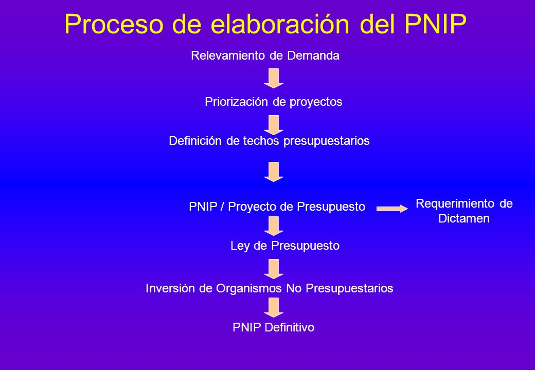 Proceso de elaboración del PNIP Relevamiento de Demanda Priorización de proyectos Definición de techos presupuestarios PNIP / Proyecto de Presupuesto Ley de Presupuesto Inversión de Organismos No Presupuestarios PNIP Definitivo Requerimiento de Dictamen