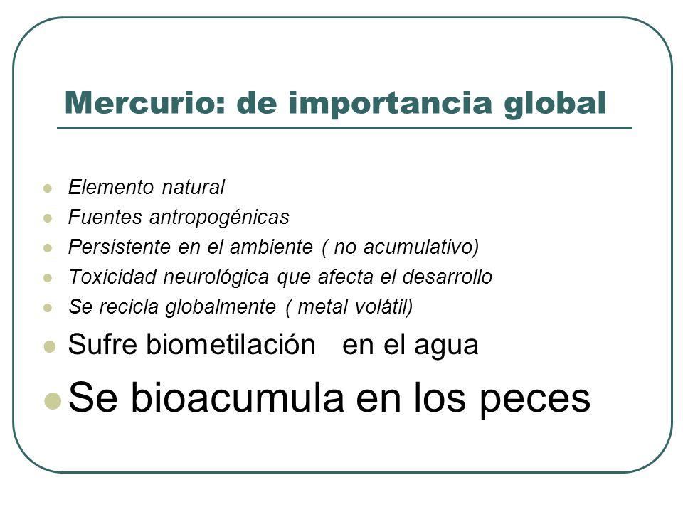 Integra la molécula de timerosal usados como fungicidas (curasemillas) Responsable de la epidemia de Iraq y China Toxicidad Similar a metilmercurio Mayor efecto renal MERCURIO ORGANICO DE CADENA LARGA MERCURIO ORGANICO DE CADENA LARGA etilmercurio fenilmercurio