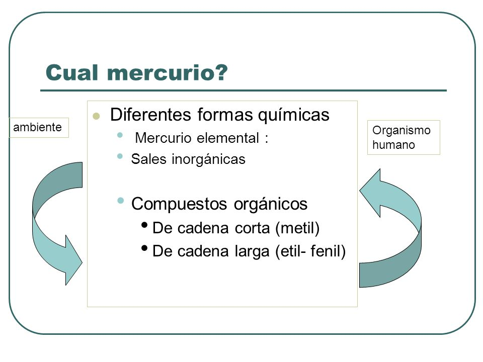 Hg (elemental) en el sedimento se convierte en metilmercurio (MeHg) MeHg entra en la cadena alimentaria acuática: peces marinos y de río Ingesta de Metilmercurio en la carne de pescados Ej: Salmón 0.035 mg/k, Atún 0.2 y Tiburón 1.37 Mercurio: conversión metabólica y bioacumulación EPA