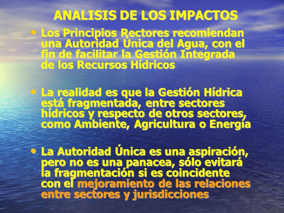 ANALISIS DE LOS IMPACTOS Los Principios Rectores recomiendan una Autoridad Única del Agua, con el fin de facilitar la Gestión Integrada de los Recurso