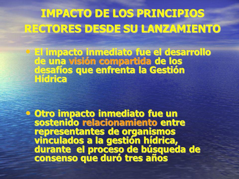 IMPACTO DE LOS PRINCIPIOS RECTORES DESDE SU LANZAMIENTO El impacto inmediato fue el desarrollo de una visión compartida de los desafíos que enfrenta l