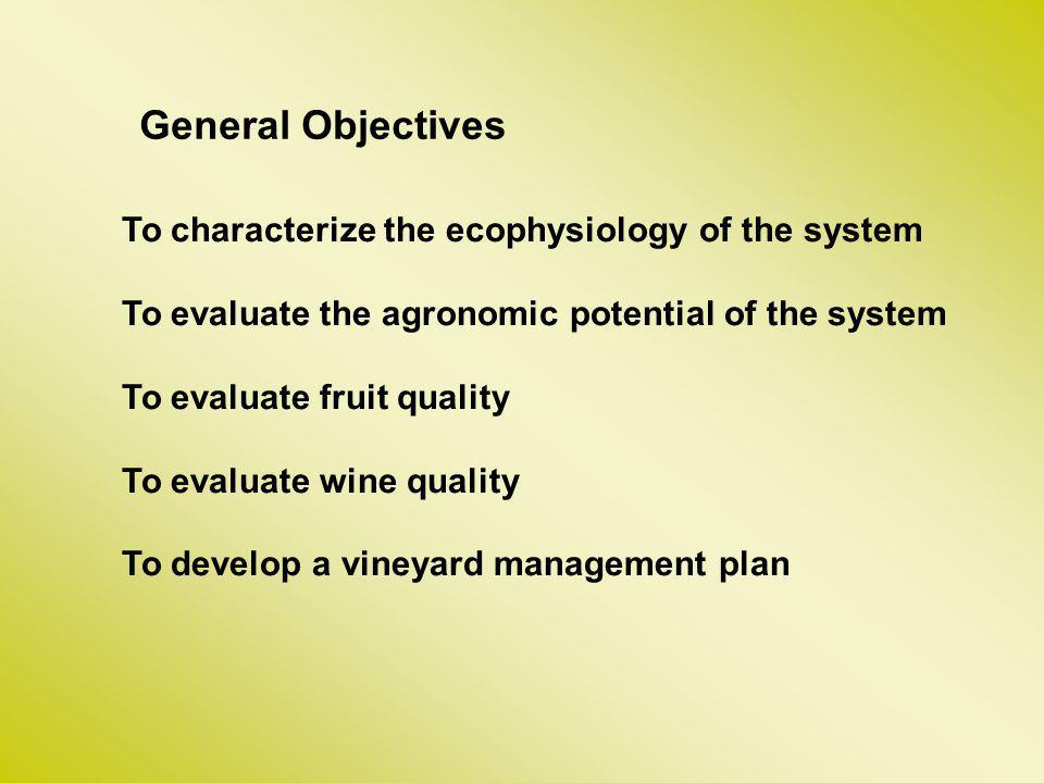 Ensayos 1.Conducción de la vid en sistemas articulados de múltiple prestación cultural (SAMPc): desarrollo experimental y ensayos de eficiencia.