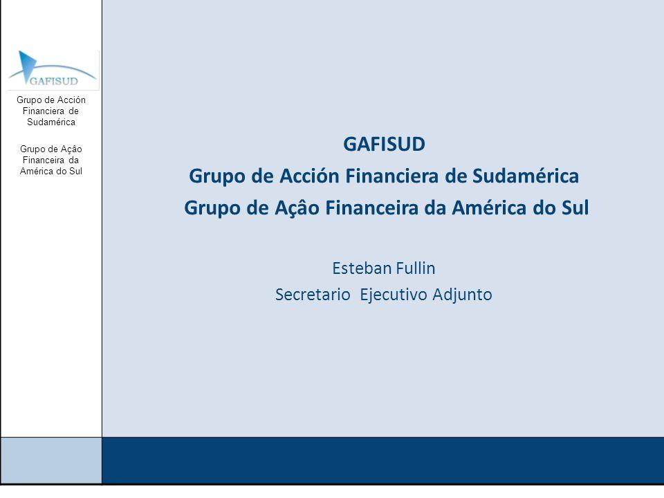 Grupo de Acción Financiera de Sudamérica Grupo de Açâo Financeira da América do Sul GAFI GAFI creado en 1989 fija los estándares internacionales en la materia (40+9) Efectúa: Evaluaciones de sus miembros (34) GAFISUD Creado en 2001 Evaluaciones Mutuas (12) Capacitación Desarrollo normativo Centro de coordinación de cooperación internacional: Red de Recuperación de Activos de GAFISUD Guía de Puntos de Contacto para la Cooperación Legal Internacional