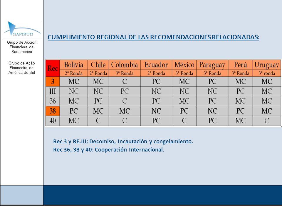 Grupo de Acción Financiera de Sudamérica Grupo de Açâo Financeira da América do Sul Documentos del RRAG: