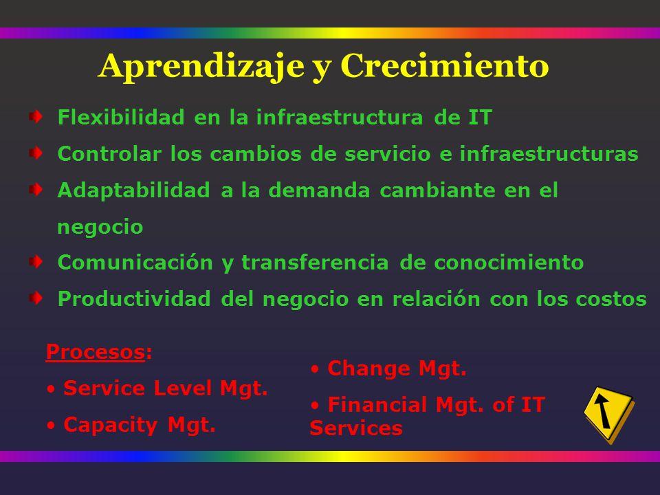 Flexibilidad en la infraestructura de IT Controlar los cambios de servicio e infraestructuras Adaptabilidad a la demanda cambiante en el negocio Comunicación y transferencia de conocimiento Productividad del negocio en relación con los costos Procesos: Service Level Mgt.