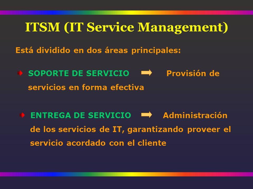 Está dividido en dos áreas principales: SOPORTE DE SERVICIO Provisión de servicios en forma efectiva ENTREGA DE SERVICIO Administración de los servicios de IT, garantizando proveer el servicio acordado con el cliente ITSM (IT Service Management)