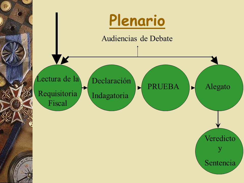 Plenario Lectura de la Requisitoria Fiscal PRUEBAAlegato Veredicto y Sentencia Declaración Indagatoria Audiencias de Debate