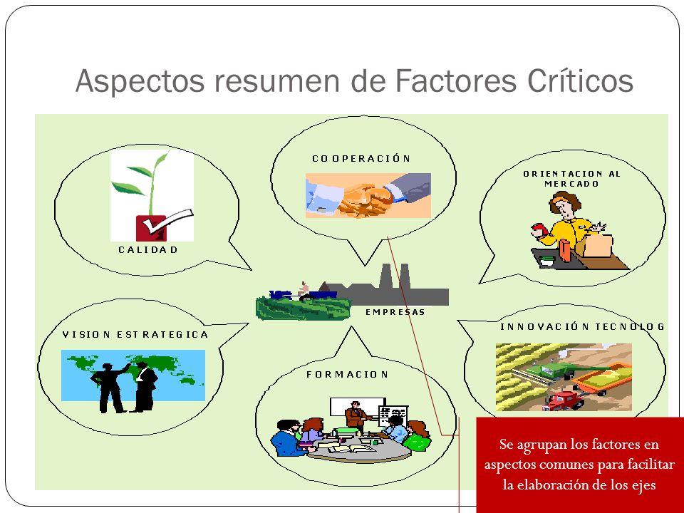 Aspectos resumen de Factores Críticos Se agrupan los factores en aspectos comunes para facilitar la elaboración de los ejes