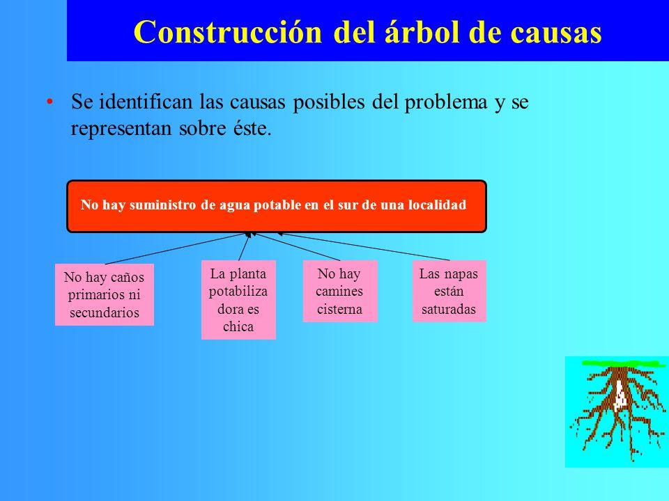 Se identifican las causas posibles del problema y se representan sobre éste. Construcción del árbol de causas No hay suministro de agua potable en el