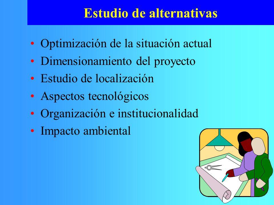 Estudio de alternativas Optimización de la situación actual Dimensionamiento del proyecto Estudio de localización Aspectos tecnológicos Organización e