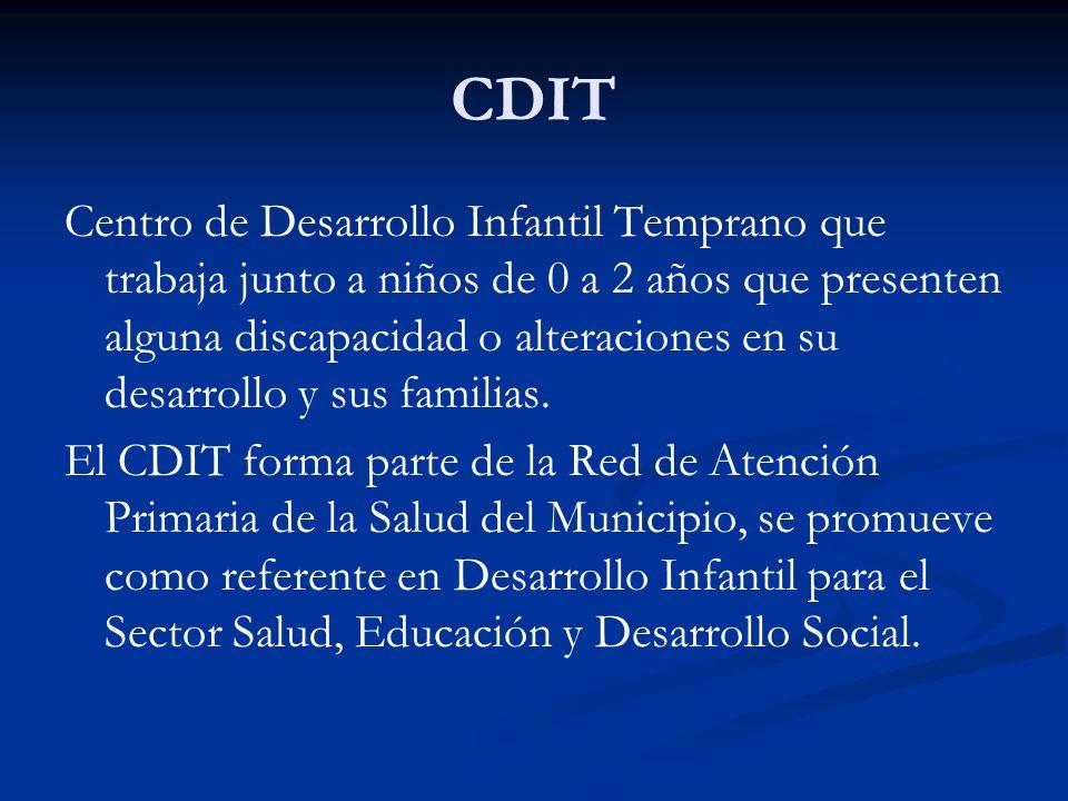 CDIT Centro de Desarrollo Infantil Temprano que trabaja junto a niños de 0 a 2 años que presenten alguna discapacidad o alteraciones en su desarrollo