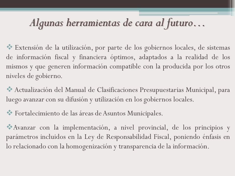 Algunas herramientas de cara al futuro… Extensión de la utilización, por parte de los gobiernos locales, de sistemas de información fiscal y financier